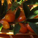 Kumquat farciti di pasta di mandorle